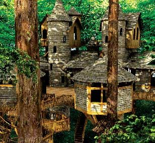 """""""Alnwick Garden Treehouse is the world's largest, all-wood treehouse. It is six thousand square feet. It's comprised of walkways, cottages, shops, a restaurant, and play areas. It holds close to one thousand people. More than thirty lime trees support the structure."""""""