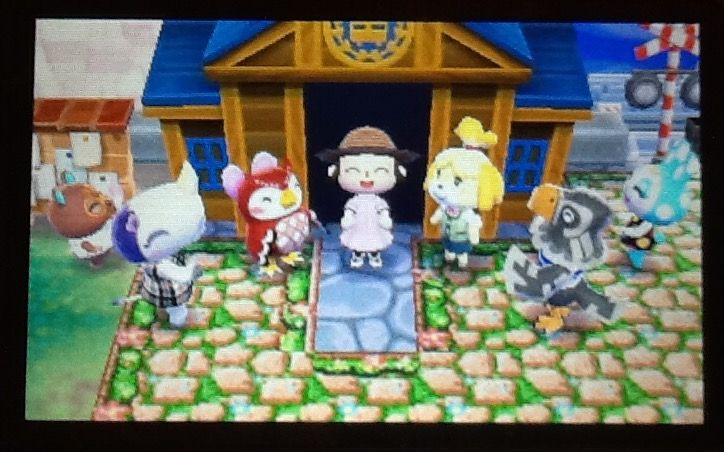 Museum Expansion Celebration Animal Crossing Animal Games My