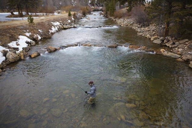 Fly Fishing In Denver Colorado Fly Fishing Trout Fishing River Fishing
