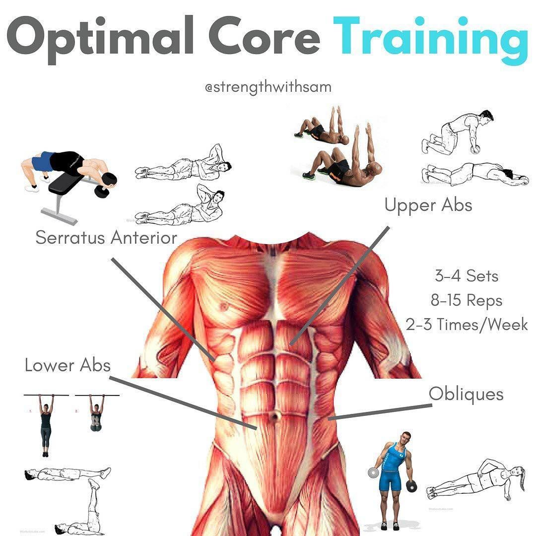 No Equipment 7 Minute Abs & Core Workout   Core workouts, Gym ...