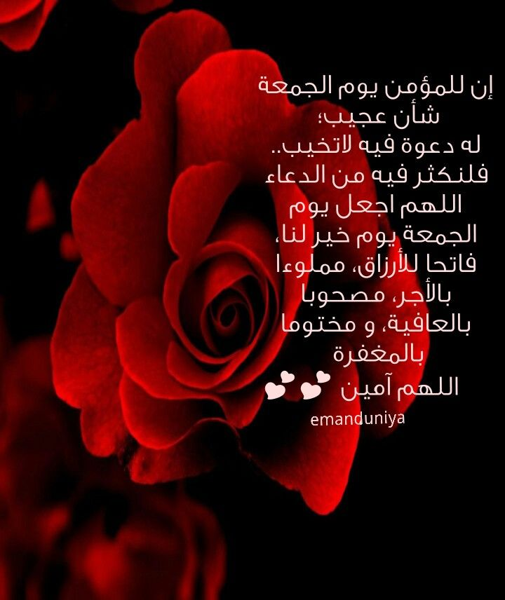 يوم الجمعة Blessed Friday Rose Islam