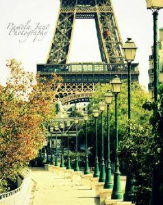 Eiffel Tower, Paris by Pamela Jane Photography