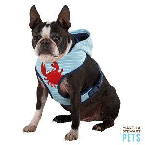 Black Diamond Walking Harness For Dogs Petsmart - DATA WIRING DIAGRAMS