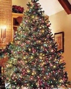 How To Decorate Christmas Tree With Multicolor Lights Pre Lit Christmas Tree Colorful Christmas Tree Christmas Tree