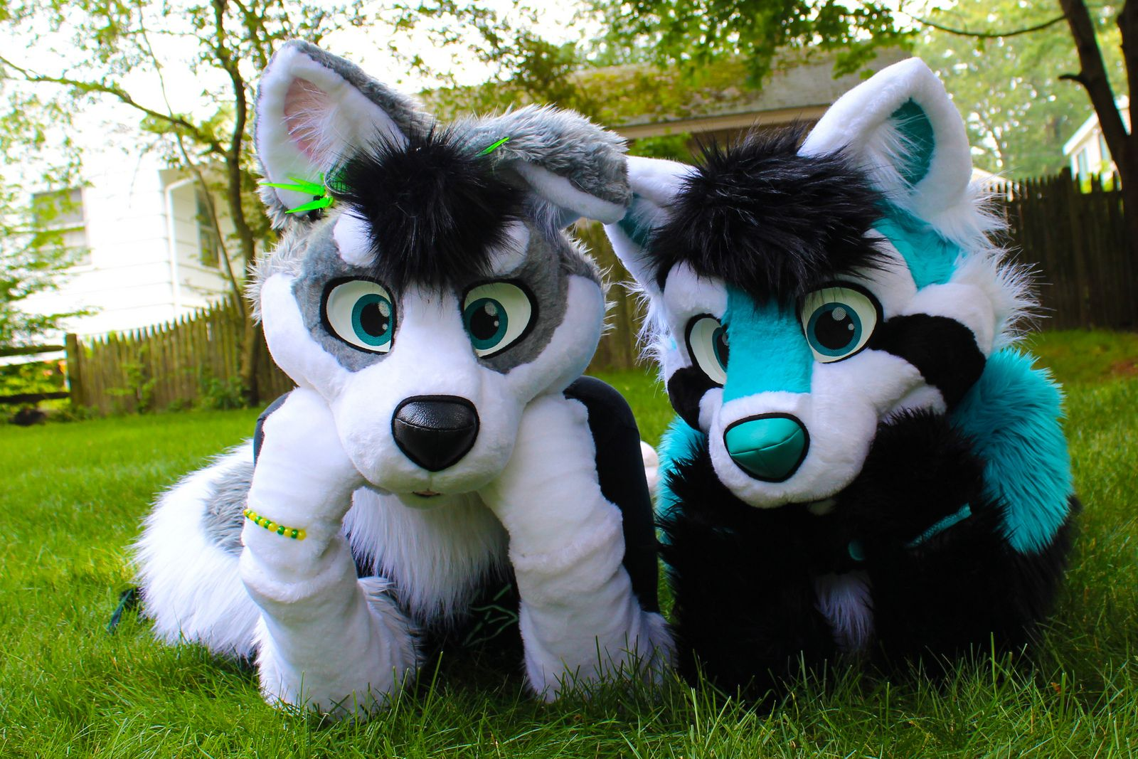Fursuit Panda spark panda | fursuit furry, anthro furry, furry art
