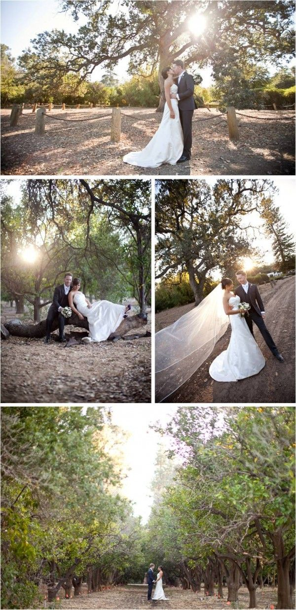 Orcutt Ranch 23600 Roscoe Blvd West Hills Ca 91304 Wedding Wedding Los Angeles Wedding Catering Prices