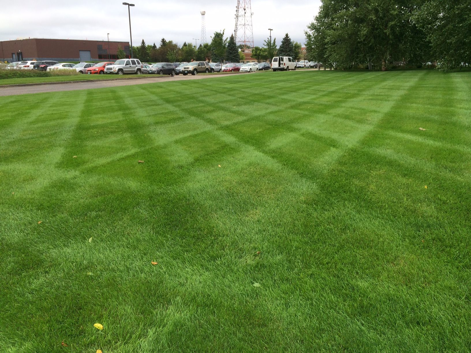 Pin On Lawn Care By Blc