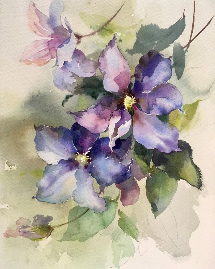 Pin By Mariusz On My Watercolours Sketches Watercolor Flowers Paintings Loose Watercolor Flowers Watercolor Flowers