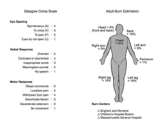 Paramedic Burns, Rule of 9\u0027s, GCS Paramedicine / Nursing