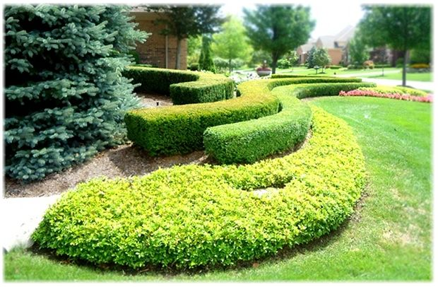 Design Your Front Yard Landscaping Front Yard With 400 x 300