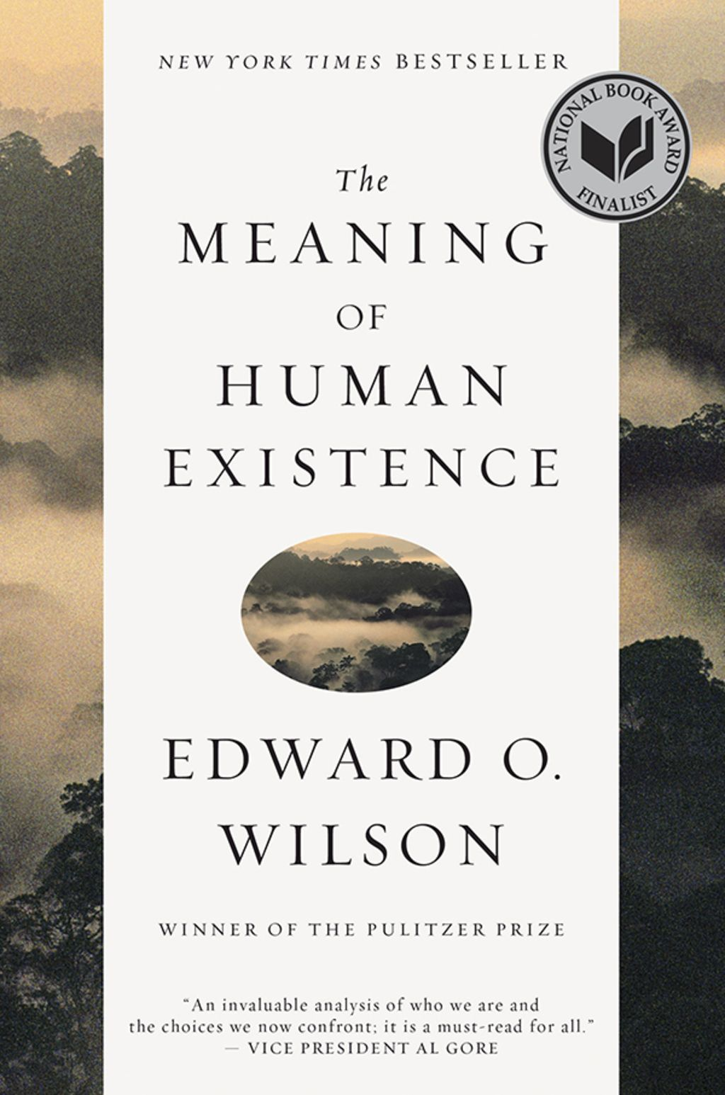 The Meaning of Human Existence (eBook)