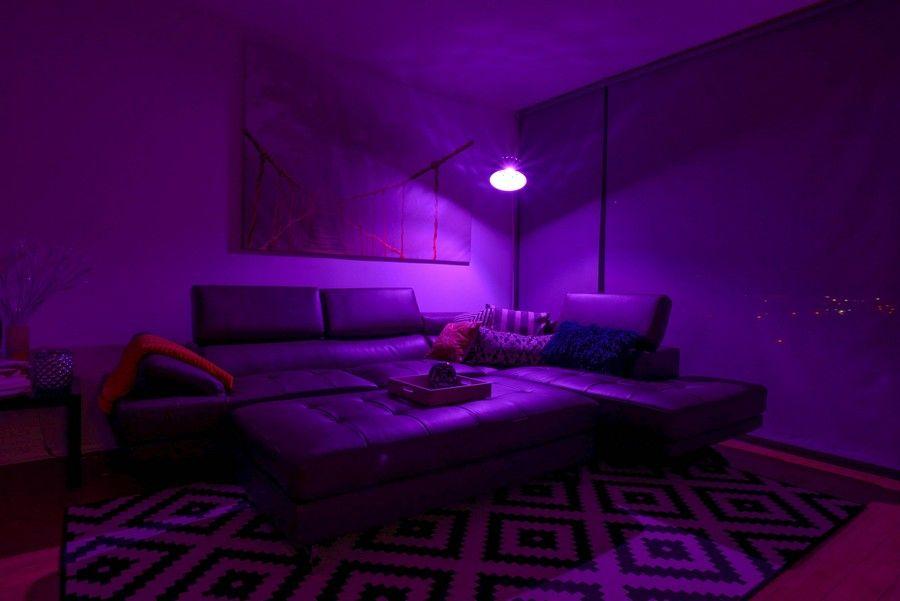 Pin by Regino Cruz on Bedroom Ideas | Purple wall paint ...