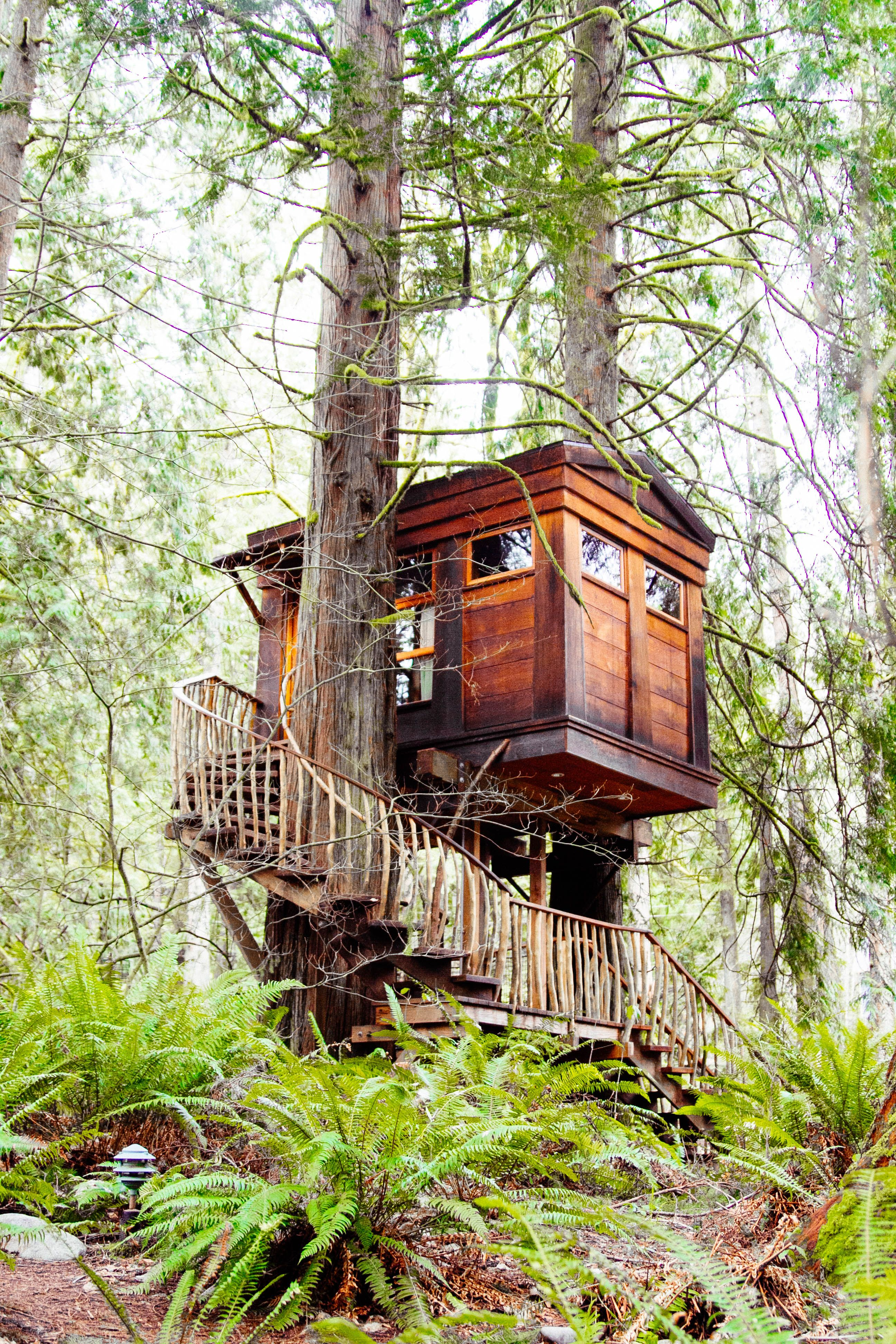 Treehouse Point Fall City Part - 45: Feels Like Never-never Land At Treehouse Point, Fall City, WA