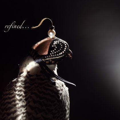falcon hoods, now we're talking