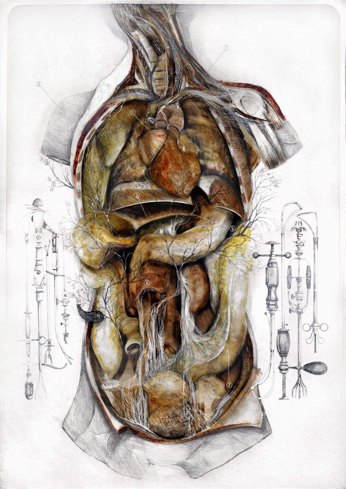 Anatomy of a Shrub || Nunzio Paci | Art and Life | Pinterest