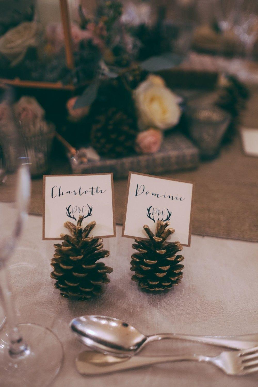 Pine Cone Wedding Table Names Winter Wedding Table Wedding