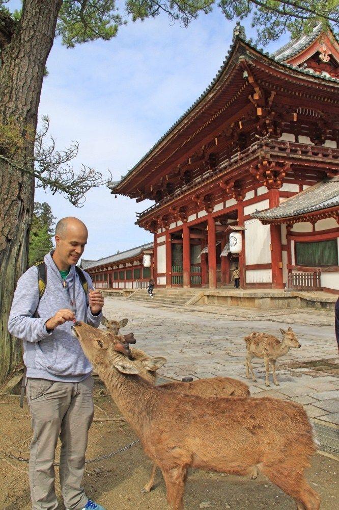 Simon feeding the deer.