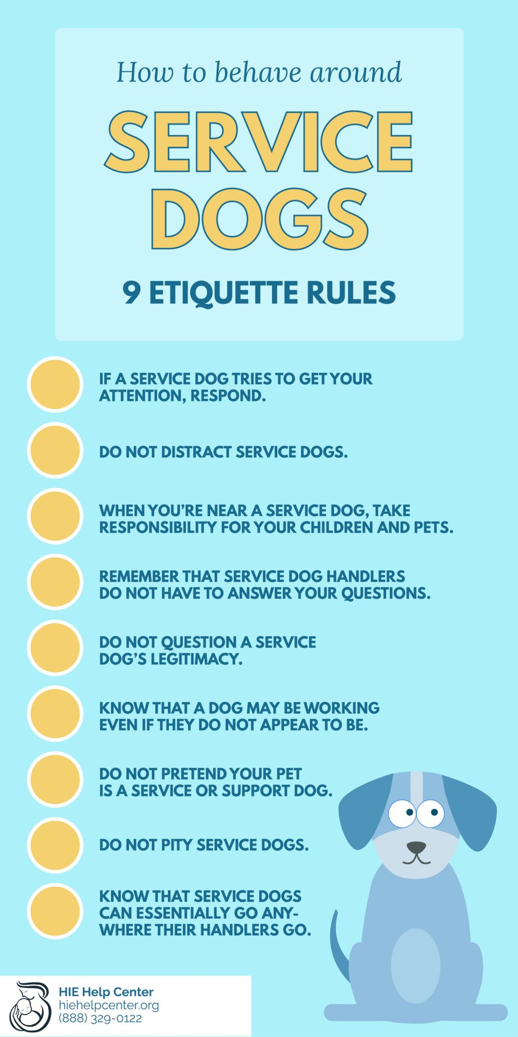 How to behave around service dogs service dogs dogs