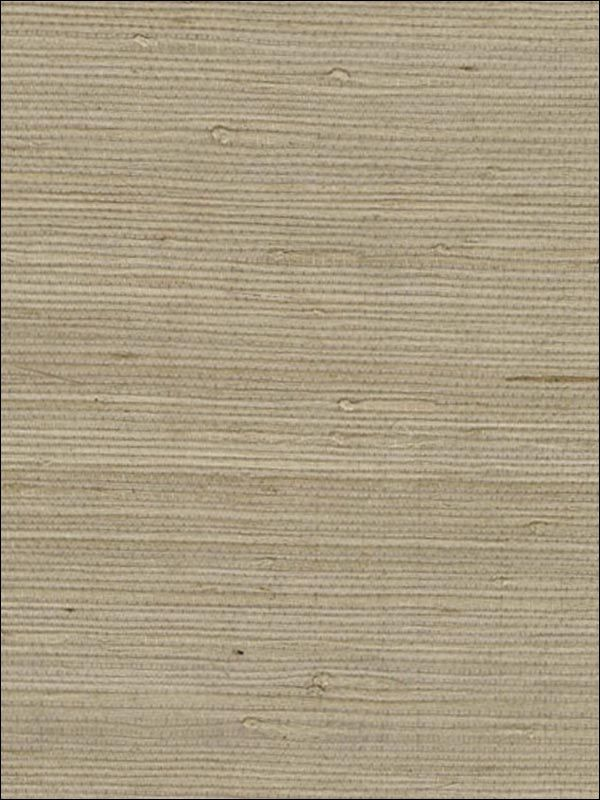 wallpaperstogo.com WTG-061126 Washington Grass & Strings Wallpaper