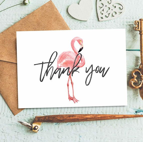 Ideal Flamingo Thank You Card, Thank You Cards of 50, Animal Notecards  QN03