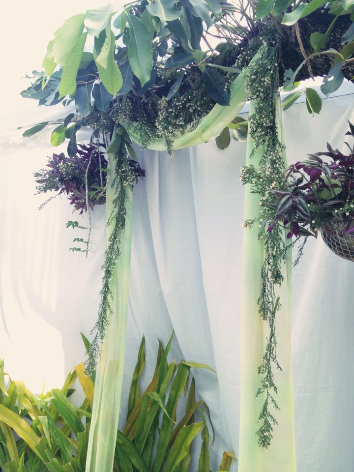 Rustic wedding canopy #backyardwedding #DIY