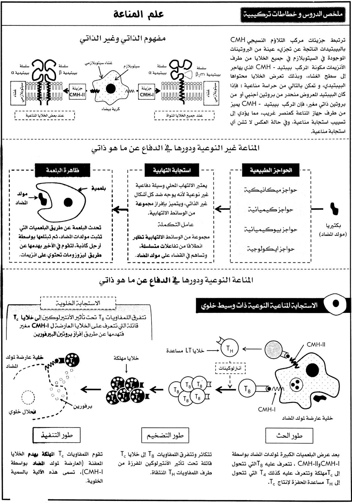 ملخص و خطاطة علم المناعة الجزء 1 علوم الحياة و الأرض Share Books Books Science