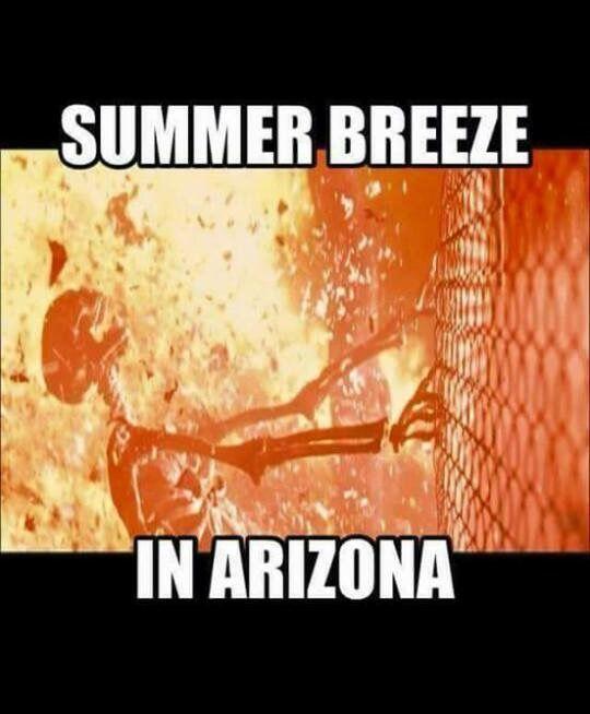Az Heat Memes : memes,