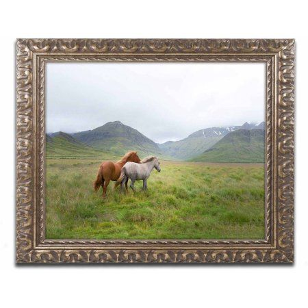 Trademark Fine Art 'Running Up That Hill' Canvas Art by Philippe Sainte-Laudy, Gold Ornate Frame, Size: 16 x 20, Multicolor