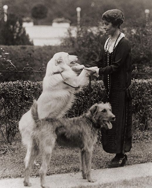 1924 - First Lady Grace Coolidge with two dogs, photo by janwillemsen, via Flickr