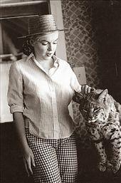 Photo of Radd Life: Caturday: Marilyn Meowroe  Radd Life: Caturday: Marilyn Meowroe    Th…