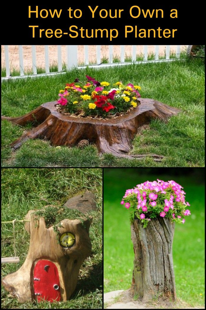How To Turn A Tree Stump Into A Planter