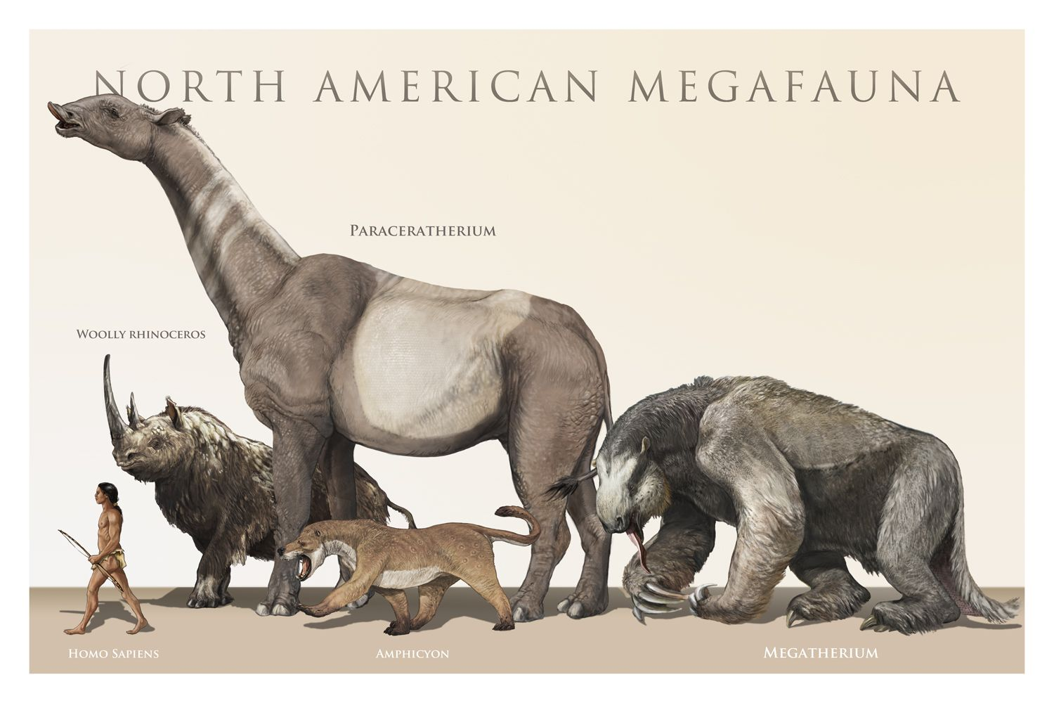 North American Megafauna The mistake with this picture