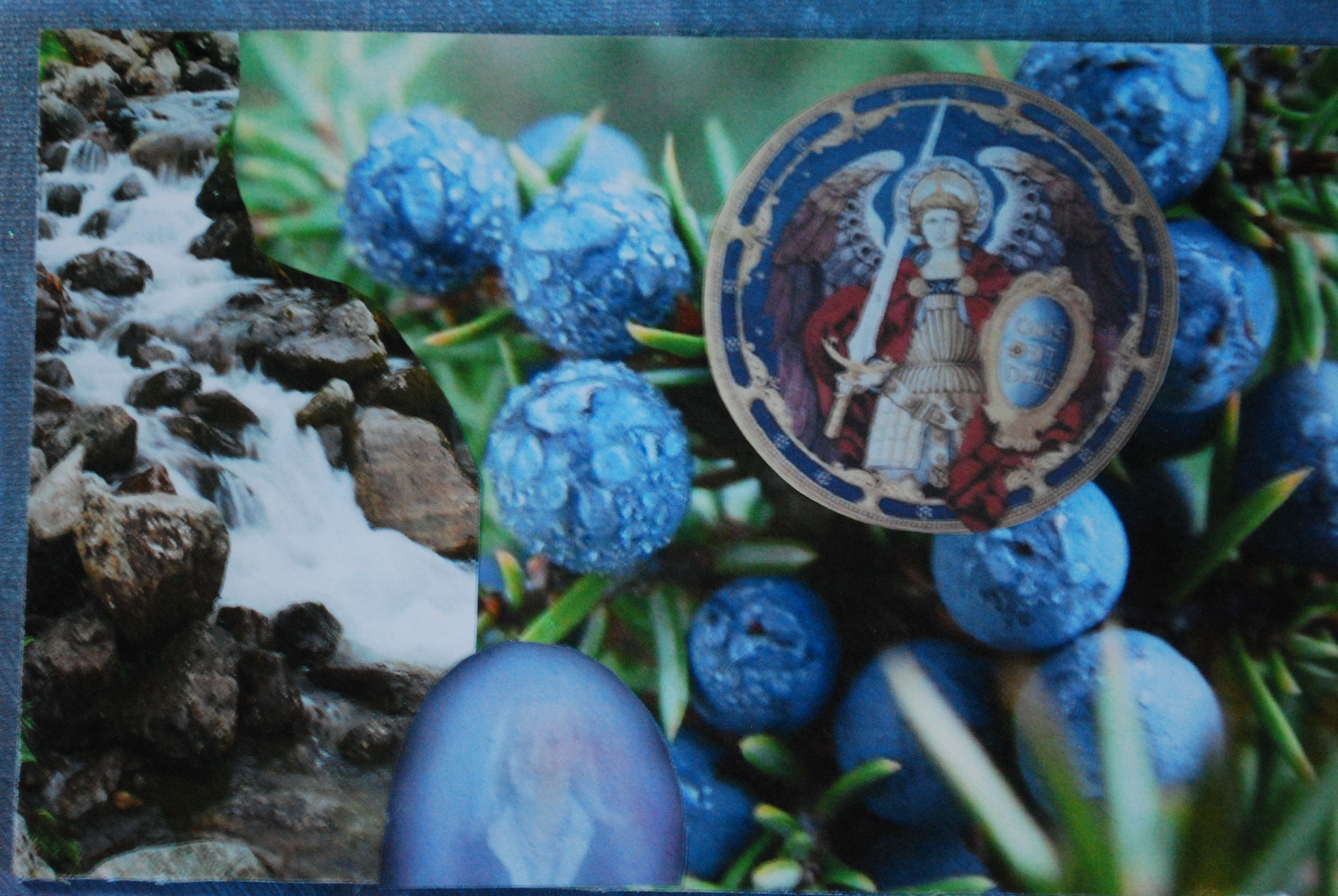 Juniper Berry Aromatic Wisdom Insight Card.   I guard and protect you from negative influences. I keep your gentle spirit safe so you may be of greater service.