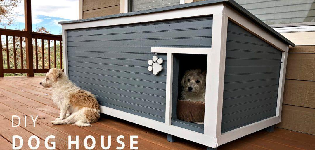 Diy Insulated Dog House Insulated Dog House Dog House Plans