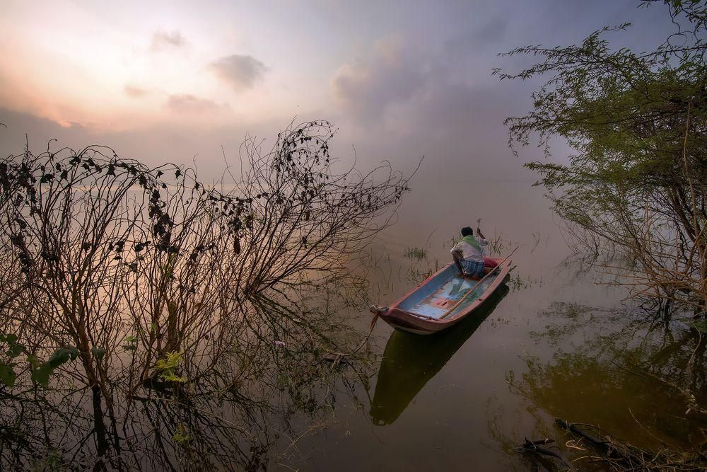 Daily Dozen for April 8, 2016 — Photos -- National Geographic Your Shot