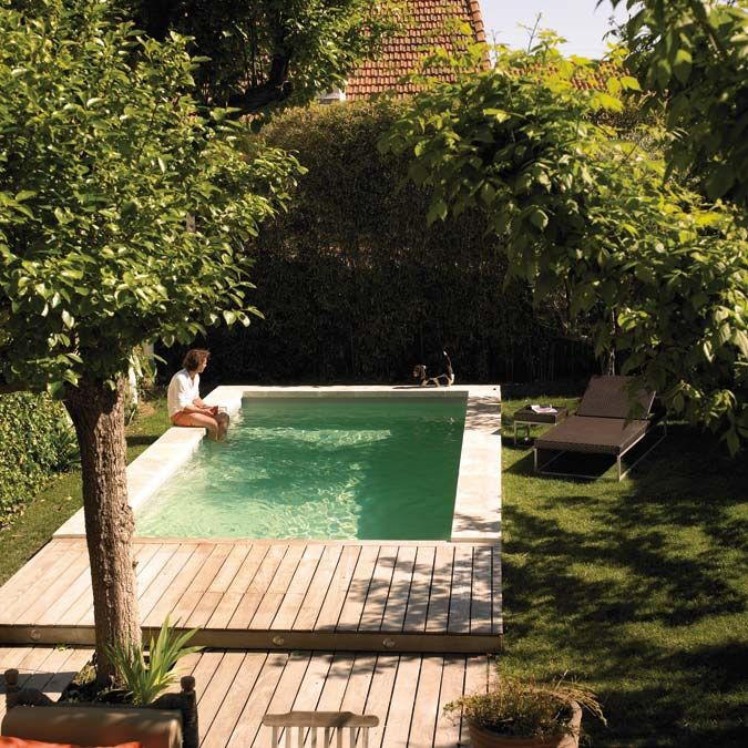 Deep water 10 modern plunge pools and spas petite for Deep swimming pools for garden