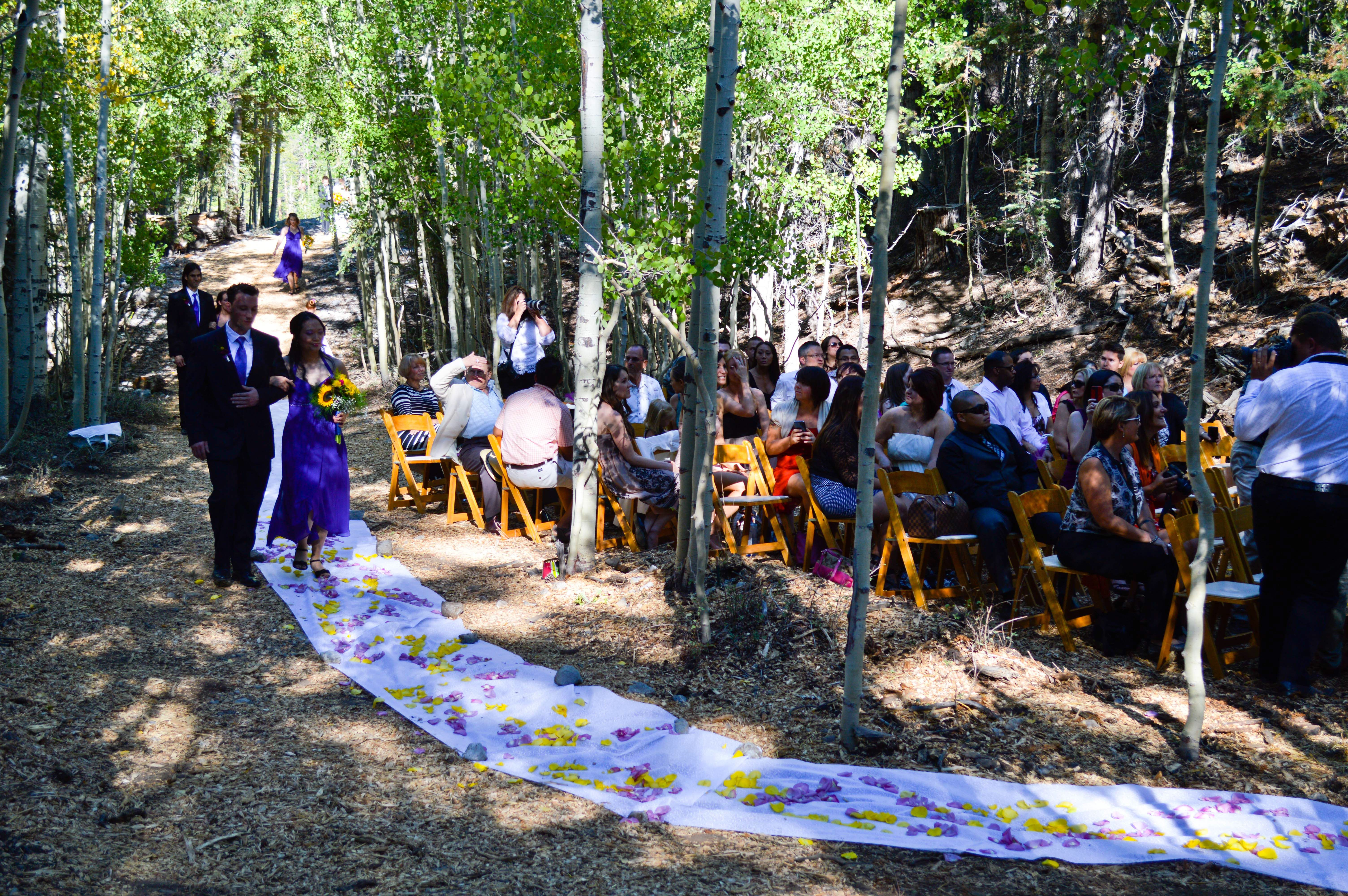Wedding At Las Vegas Ski And Snowboard Resort Outdoor Woodsy Scenic Mt Charleston Summer Venue