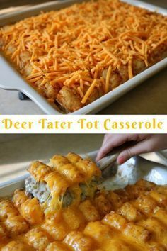 Deer Tater Tot Casserole  Fried ground venison burger with onions and green bell peppers smothered in cream of mushroom soup and topped with golden brown tater tots and c...