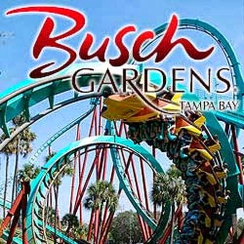50 Most Popular Tourist Attractions In The World   Busch Gardens, Tampa  Bay, FL