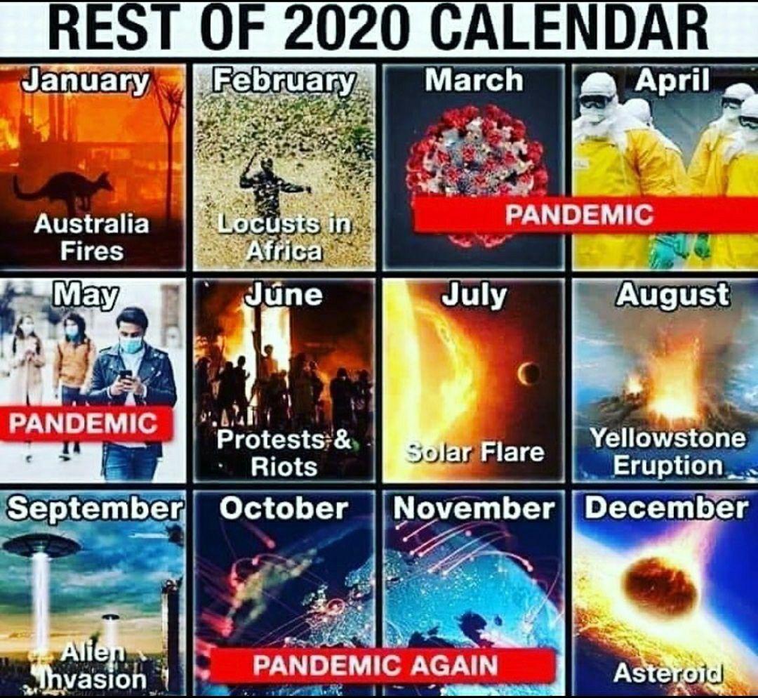 2020 Calandar Memes Funny Funny Memes