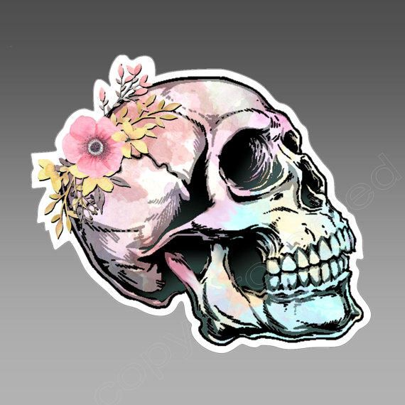 Watercolor Skull with delicate flower vinyl car bumper sticker / decal. Approximately 104 x 92 mm ( 4 x 3.6 inches) from PossumsPrints on Etsy.