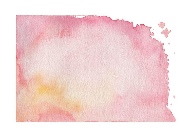 Kyoto Lavis Rose Cerisiers Aquarelle Et Calligraphie Studio Le