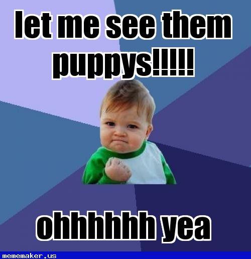 New Meme In Http Mememaker Us Yay Success Kid Teacher Humor Teacher Memes Among us memes are taking over… by admin september 21, 2020, 10:36 am. pinterest