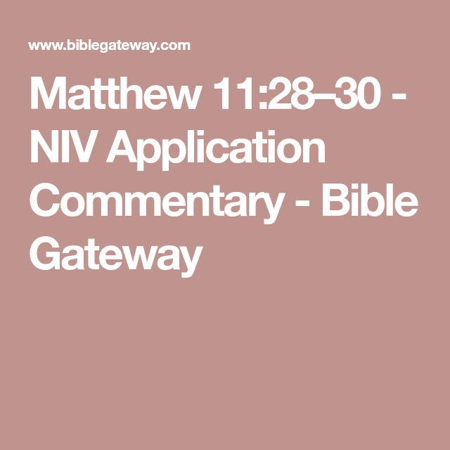 Matthew 112830 NIV Application Commentary Bible