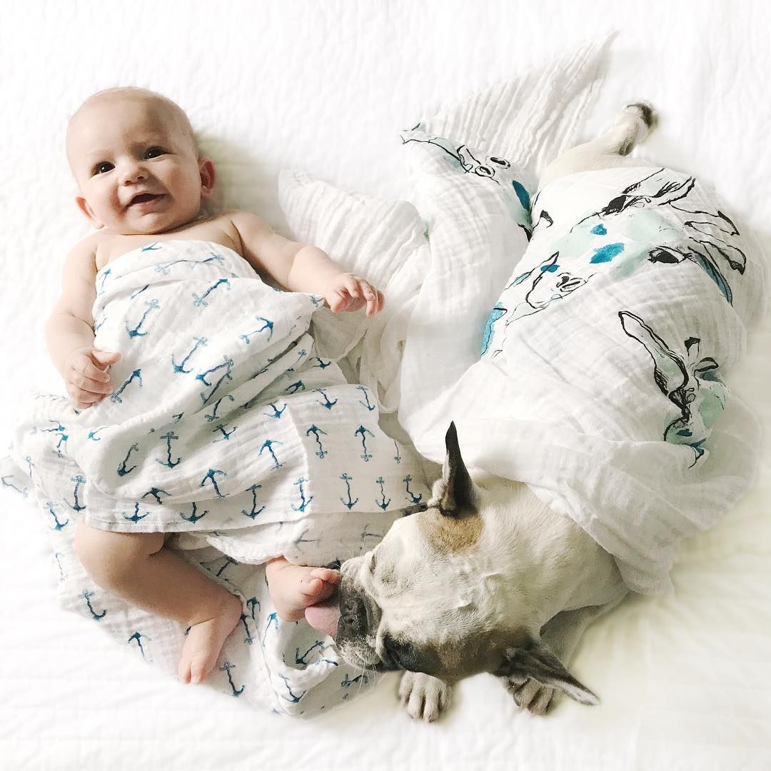 A breakdown for the perfect uses of a few Aden + Anais blankets that everyone is sure to love!