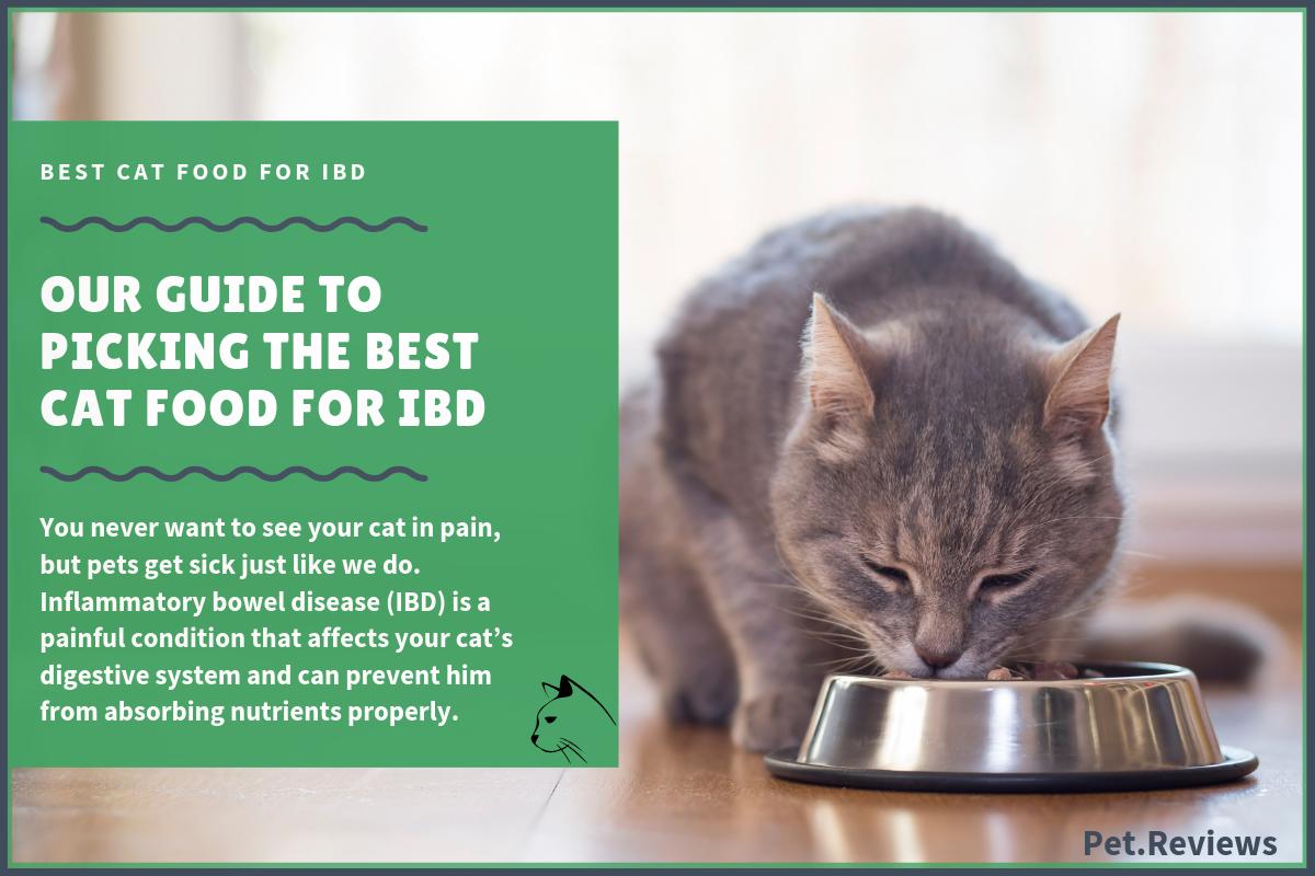 10 Best Wet Canned Cat Foods For Ibd Inflammatory Bowel Disease In 2020 Canned Cat Food Inflammatory Bowel Disease Ibd