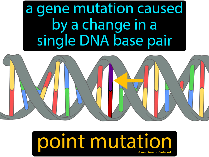 Kid Definition Of Gene Pool - definitoin