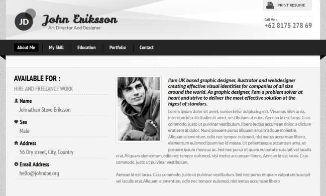 Resume Online Template 40 Professional Resume Templates  Web Resumes  Pinterest