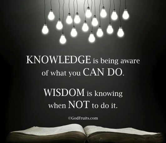 wisdom the knowledge of many things Knowledge is the substance that wisdom, intelligence, understanding and prudence operate with it isn't just the amount you know it isn't just the amount you know how a specific knowledge works with everything else you know determines whether it strengthens or weakens your wisdom, understanding and prudence.