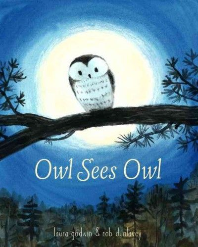 A baby owl flies from the safety of his nest for the first time to explore the starry nighttime world before being startled back home, in a luminously illustrated picture book that features sparse text inspired by reverso poetry.